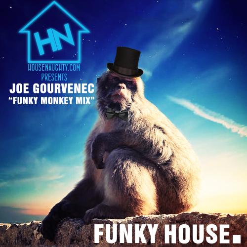 Funky Monkey Mix - Funky House - Joseph Gourvenec